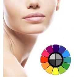 Curso de visagismo y colorimetría aplicado a micropigmentación (online)